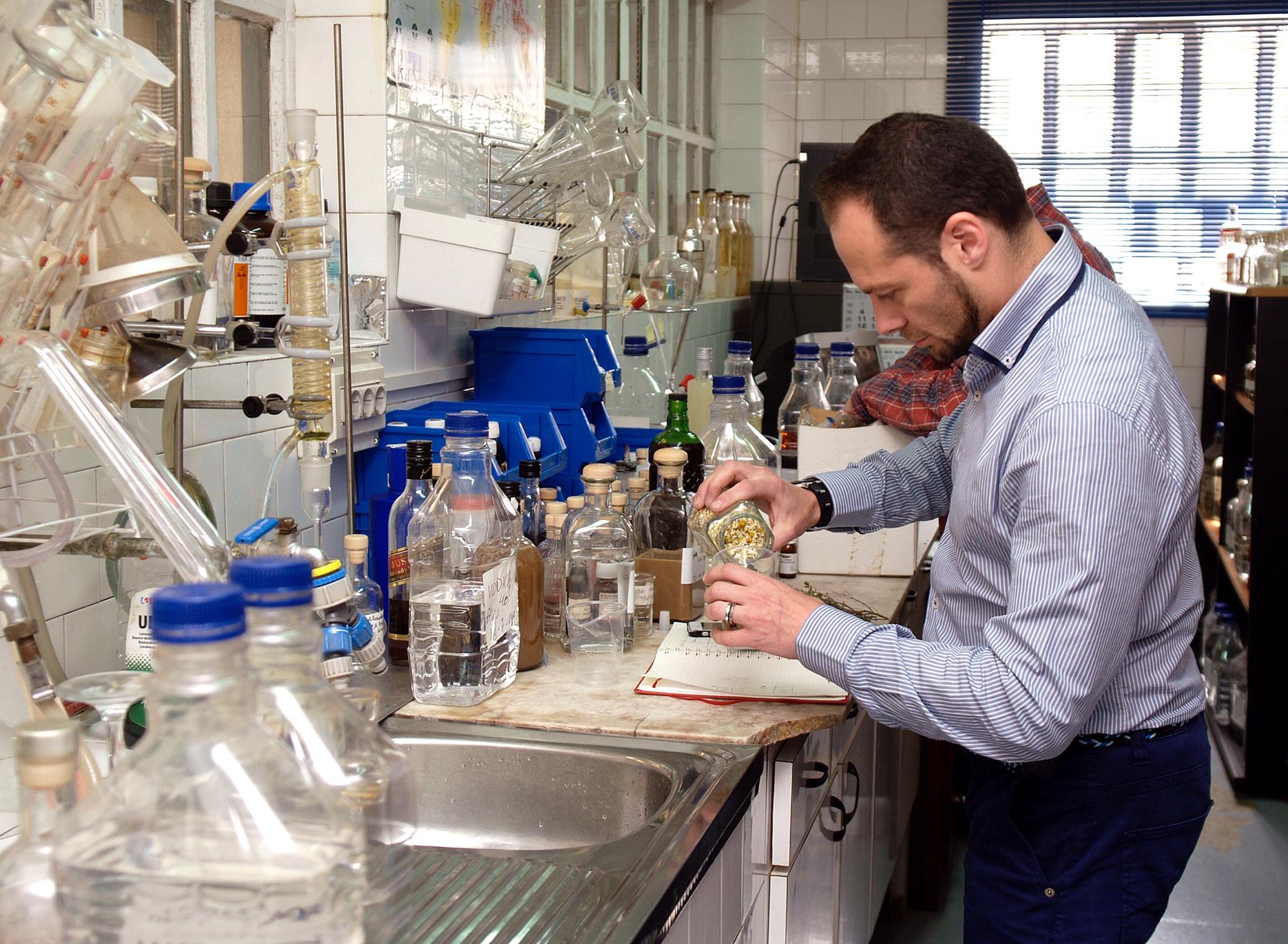 Juníperus Communis en la elaboración de Gin Senns