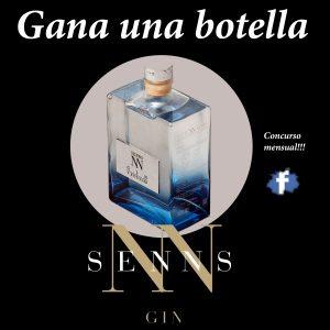 concurso_SENNS_gin