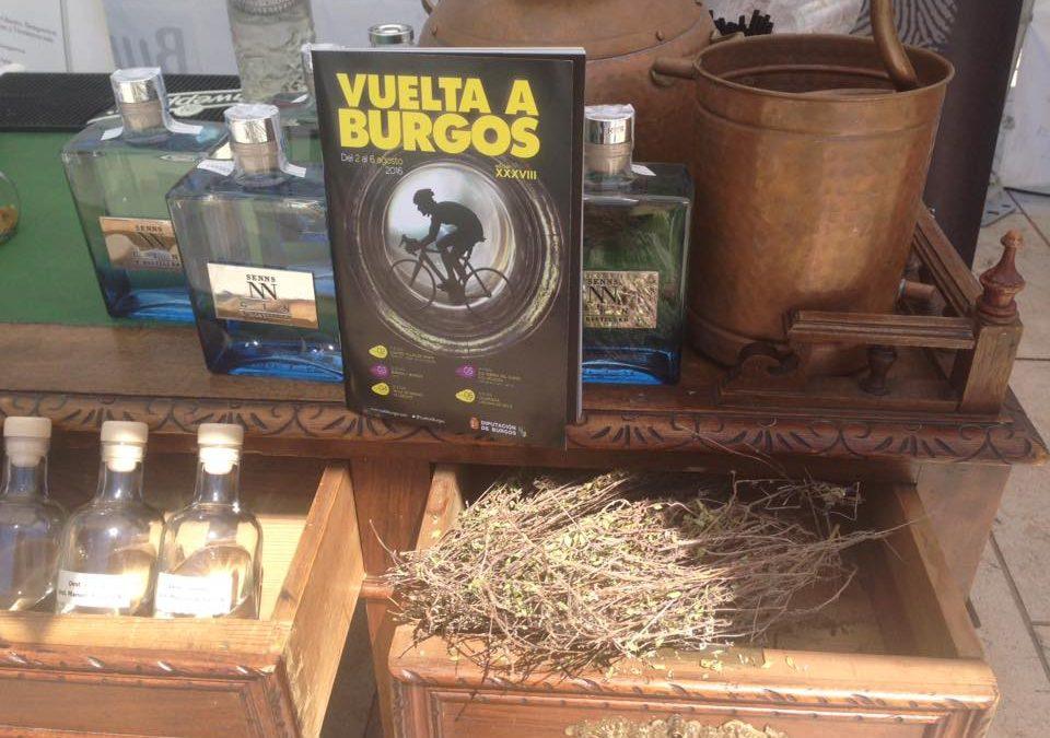 Vuelta a Burgos 2016